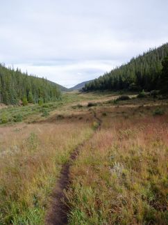Lost Creek Wilderness meadows